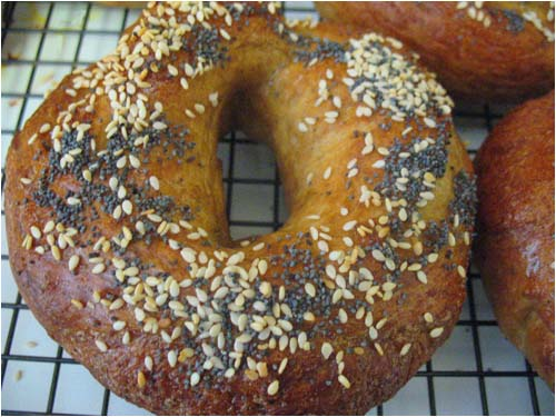 Poppy and Sesame Seed Bagels