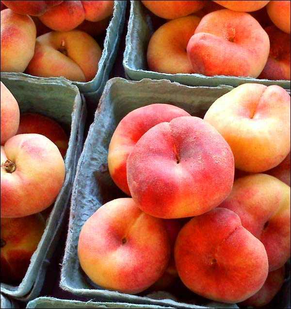 Donut Peaches by Cynthia Wenslow
